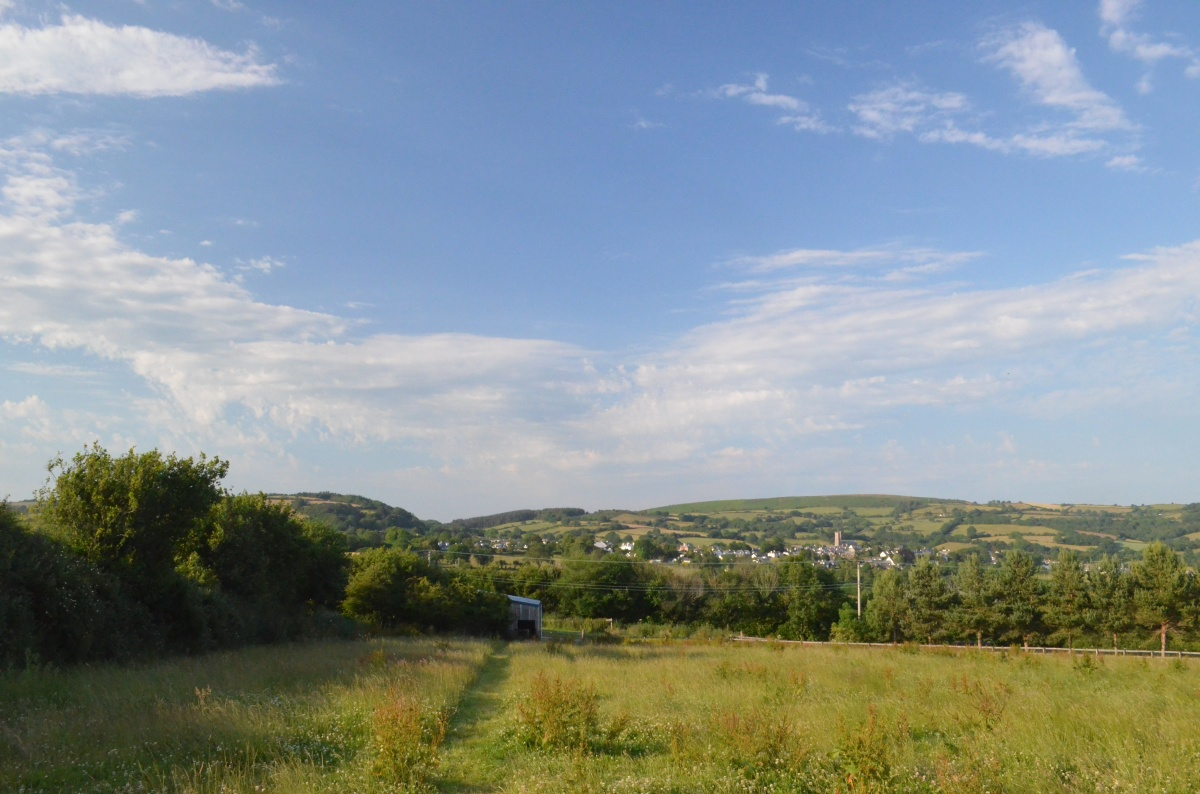 Dartmoor story IV#amwriting