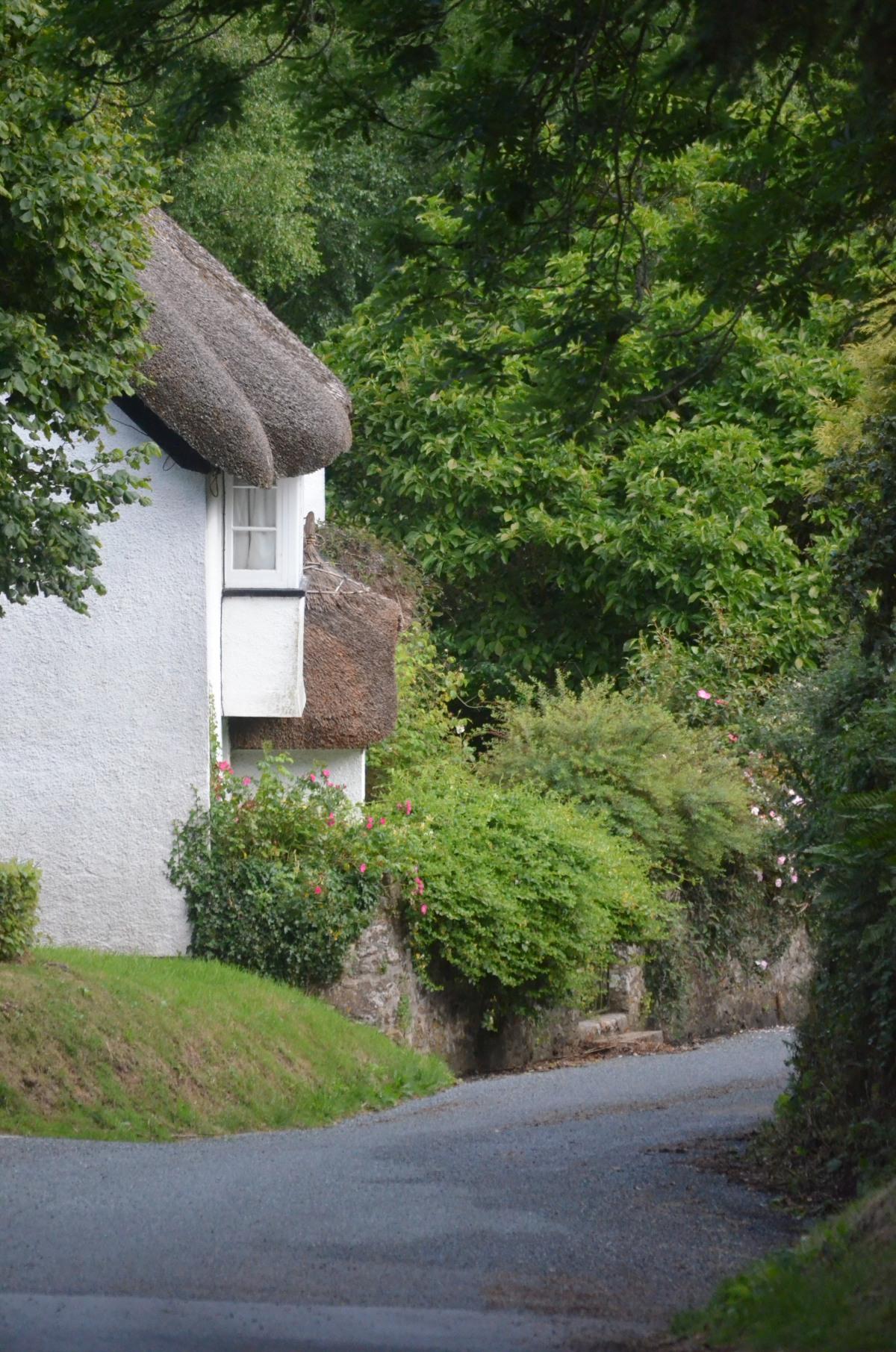 Dartmoor story III#amwriting