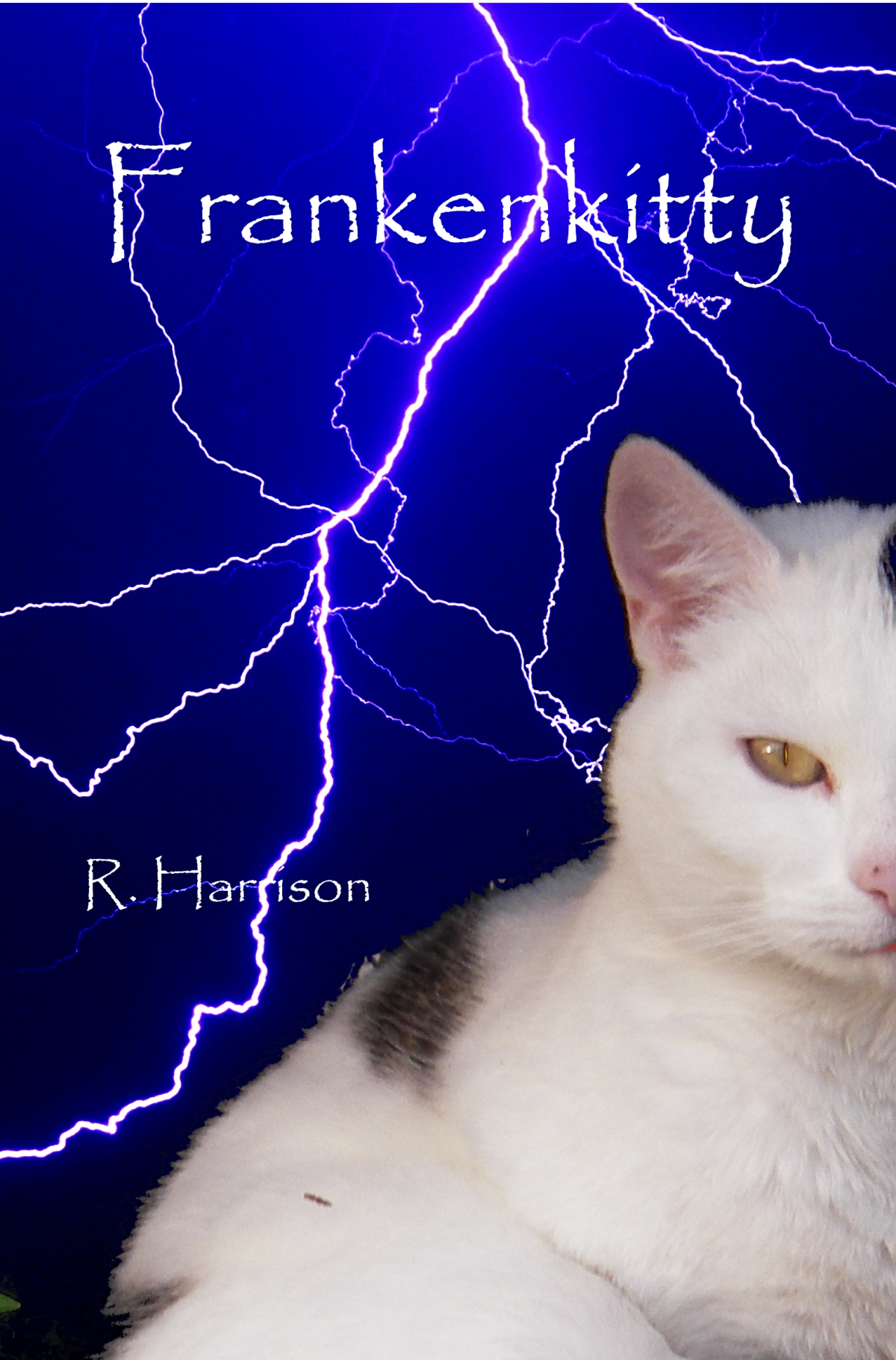 Frankenkitty #indiebooksbeseen #newbook