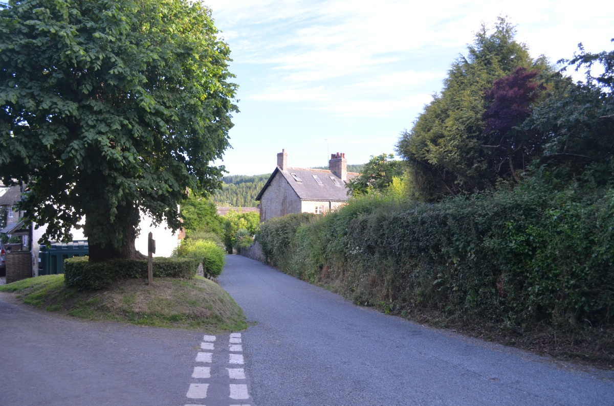 Dartmoor story XIV #amwriting#WIP
