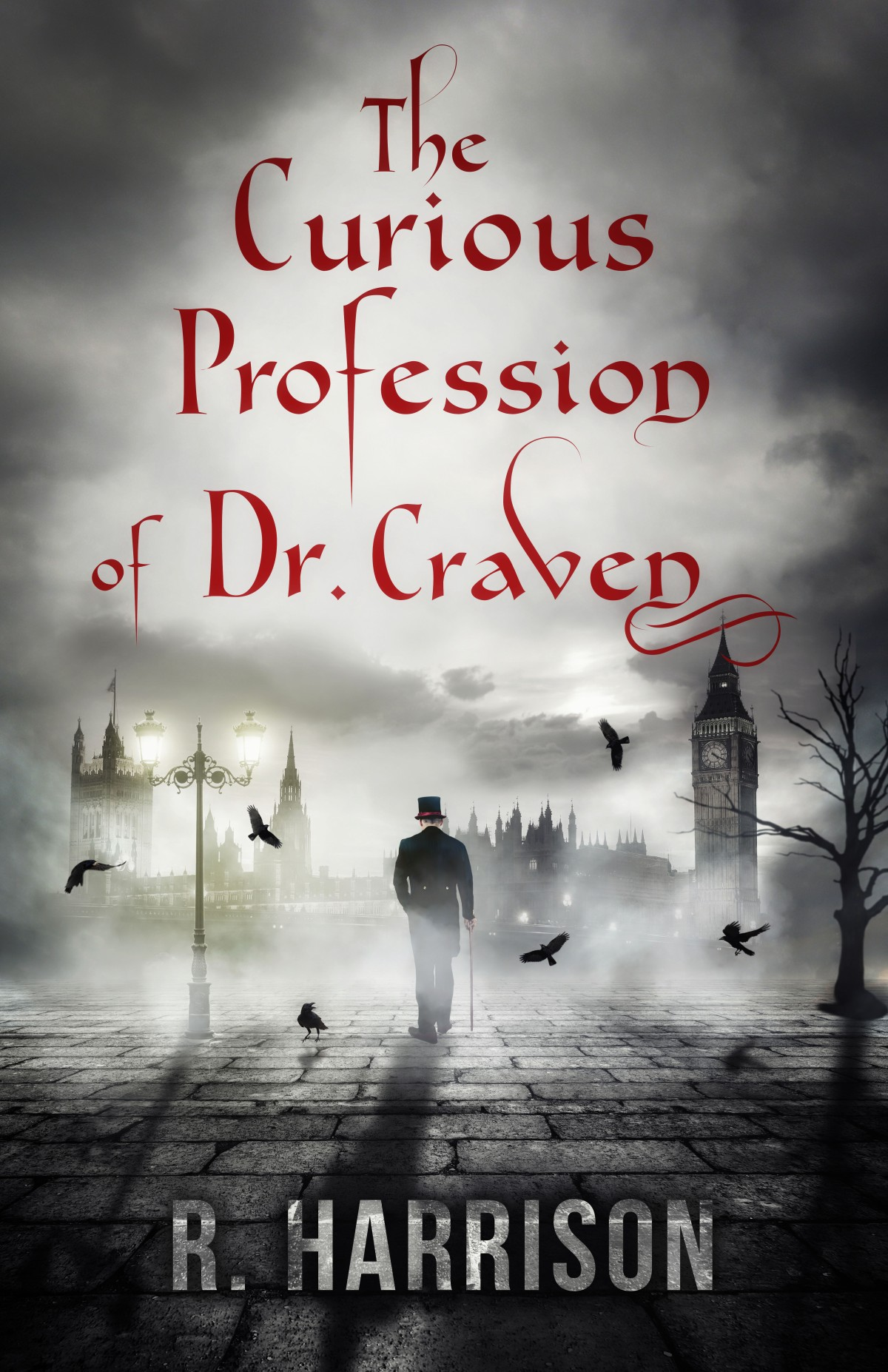 The Curious Profession of Dr. Craven – Another ******** book promo#freebook