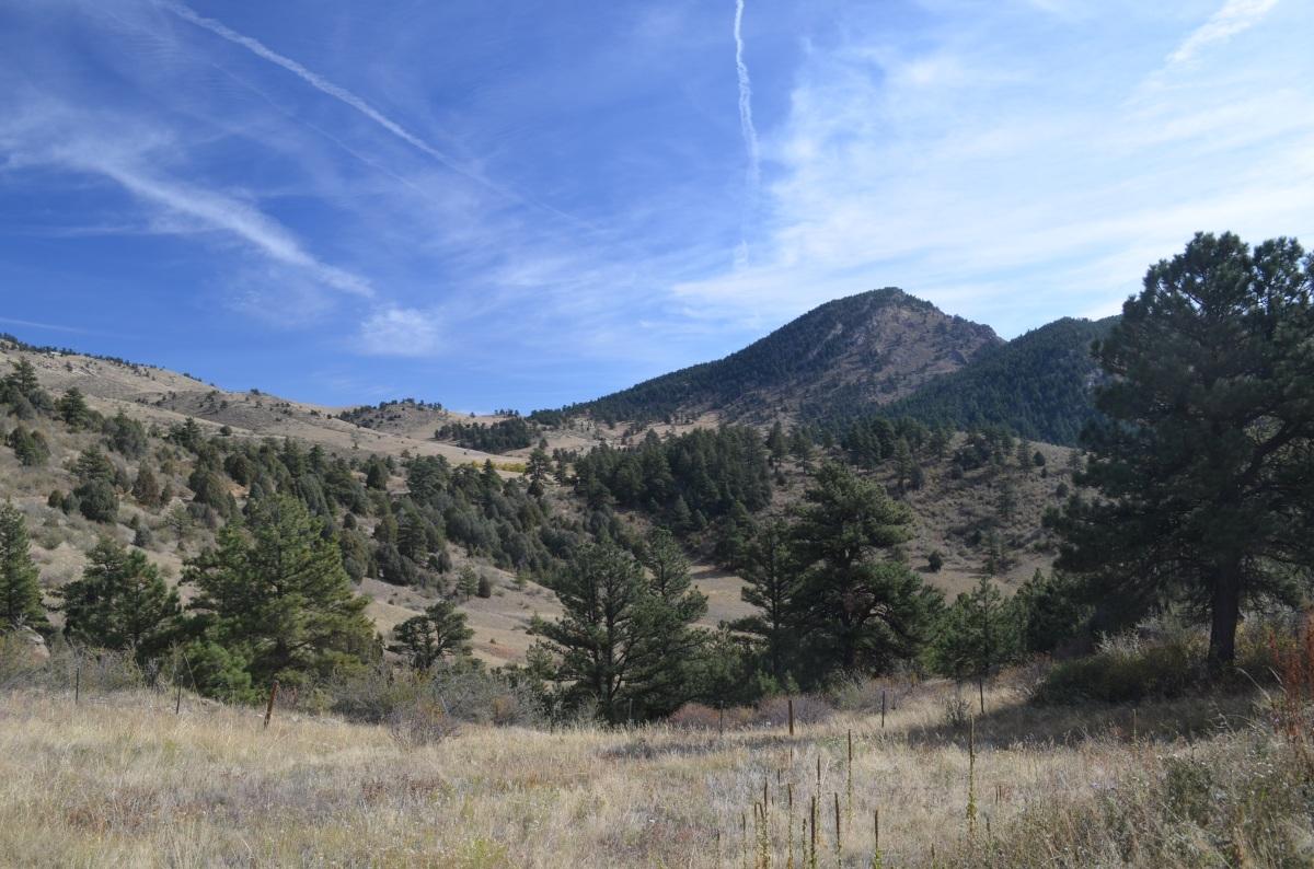 Elk Range Trail